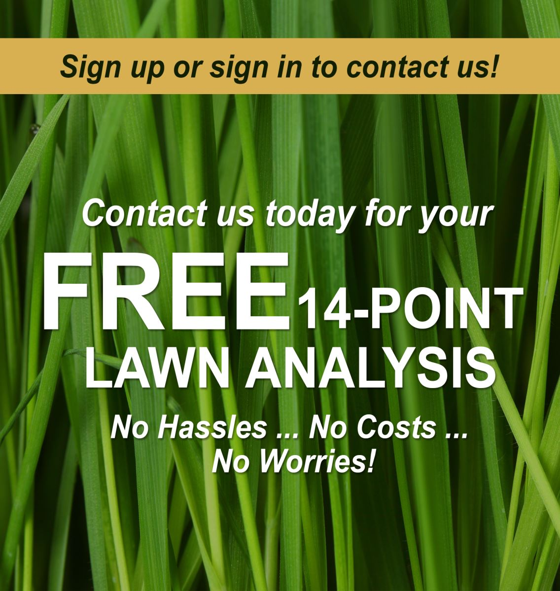 Free Lawn Analysis & We're Hiring