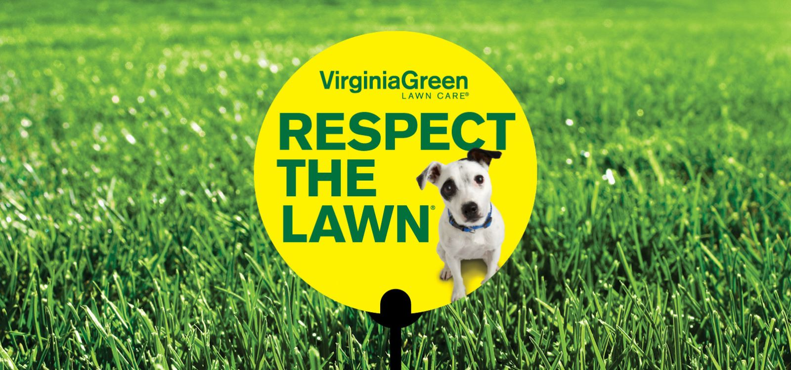 Respect the Lawn
